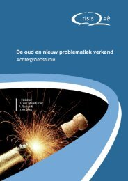 vuurwerk def 5-12 - Stichting Maatschappij en Veiligheid