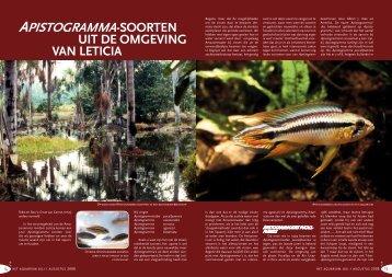 ApistogrAmmA-soorten - Ernst van Genne
