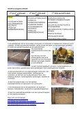 Beschrijvingen studierichtingen 2de graad BSO - Page 4