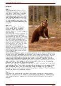 Turen går dybt ind i de finske skove tæt ved den russiske ... - Scanbird - Page 3