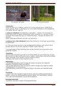 Turen går dybt ind i de finske skove tæt ved den russiske ... - Scanbird - Page 5