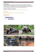 Turen går dybt ind i de finske skove tæt ved den russiske ... - Scanbird - Page 6