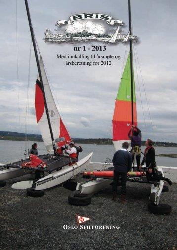 nr 1 - 2013