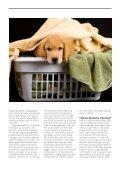 HUNDEN ALENE HJEMME - Dyrefondet - Page 4