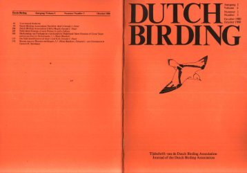 1980-3 - Dutch Birding