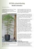 NIWAs planteforslag - Foreningen Japanske Haver - Page 4