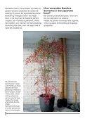 NIWAs planteforslag - Foreningen Japanske Haver - Page 6