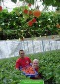 Aardbeien als afrodisiacum - Marcel Dings - Page 3