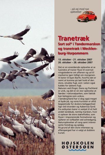 Tranetræk - Sort Safari