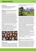 Vietnam fra nord til syd - Team Benns - Page 4