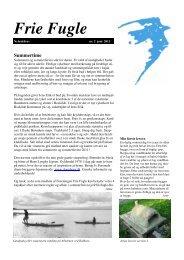 Nyhedsbrev 2 juni 2011.pub - Idéværkstedet De Frie Fugle