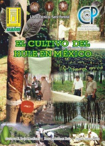 El Cultivo del Hule en México - red de desarrollo sustentable
