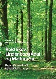 Rold Skov, Lindenborg Ådal og Madum Sø