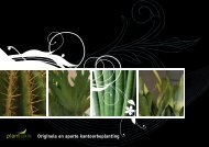 Originele en aparte kantoorbeplanting - Plant-Axis