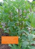 Jorden kalder - Foreningen for Biodynamisk Jordbrug - Page 7