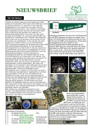 nieuwsbrief oktober 2012 - jaargang 8 - nr.3 - Stichting Natuur- en ...