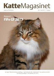 FIFe GF 2013 - Katteklubben