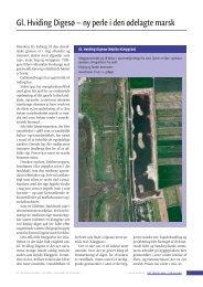 Gl. Hviding Digesø – ny perle i den ødelagte marsk - Det tabte land