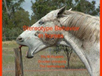 Stereotype Behavior in horses