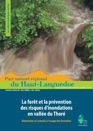 Forêt et prévention des inondations, démarches et conseils à ... - Cepri