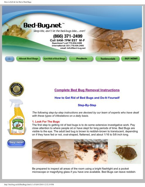 Complete Bed Bug Removal Instructions - Bed Bugs