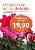 Nyhet! - Skinnarnas Blommor & Trädgård - Page 3