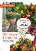 Nyhet! - Skinnarnas Blommor & Trädgård - Page 4