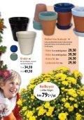 Nyhet! - Skinnarnas Blommor & Trädgård - Page 5