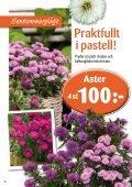 Nyhet! - Skinnarnas Blommor & Trädgård - Page 6