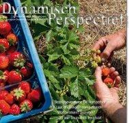 DP2011-3 - BD-Vereniging