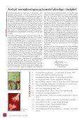 LIGHEDSTEGN - Center for Ligebehandling af Handicappede - Page 2