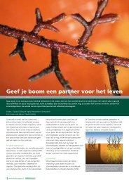 Geef je boom een partner voor het leven - Servaplant