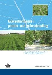 08.4B Kväveutnyttjande i potatis och grönsaksodling - Svenskt Sigill