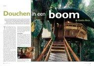 Costa Rica Boomhotel - Special Eyes
