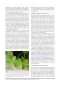 een inleiding tot de containerfloristiek - Nationale Plantentuin van ... - Page 3