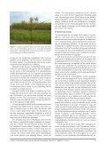 een inleiding tot de containerfloristiek - Nationale Plantentuin van ... - Page 6