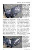 witte veren - eksters & zo - Page 5