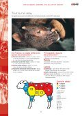 Les viandes de boucherie - Page 5