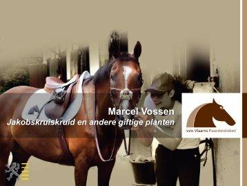 Presentatie Marcel Vossen - Infovoormiddag 2013 - Vlaams ...