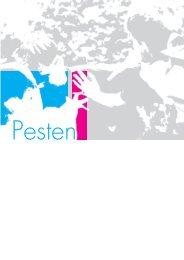 de brochure 'Pesten in het Jeugdwerk' - Jeugd en Vrede
