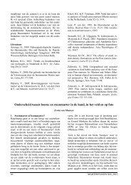 Herkenning van boommarter en steenmarter - EcoNatura