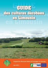 des cultures dérobées - Les chambres d'agriculture en Limousin