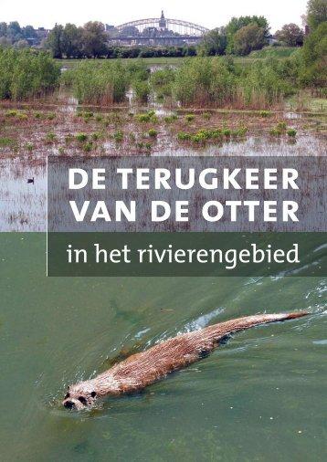 Terugkeer van de otter in het rivierengebied - ARK Natuurontwikkeling