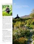 Ola Aukrust odlar biodynamiska grönsaker och örter på sin gård i ... - Page 2