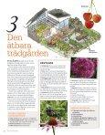 1 trädgård – 3 stilar - Garden by anna - Page 4