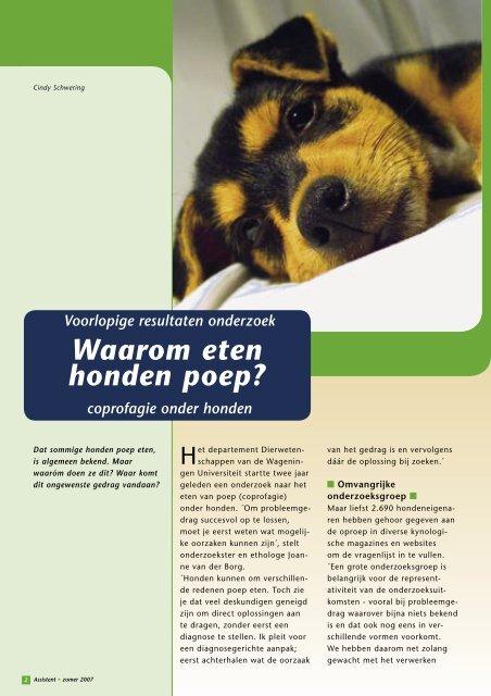 Waarom eten honden poep? - Schwering Communicatie