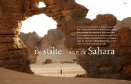 Lees hier het artikel - Sahara Art Venture
