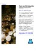 Download brochure - Dos & Bertie Winkel - Page 2