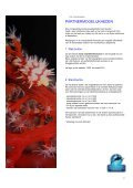 Download brochure - Dos & Bertie Winkel - Page 7
