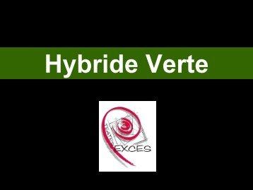 Hybride Verte - Exces
